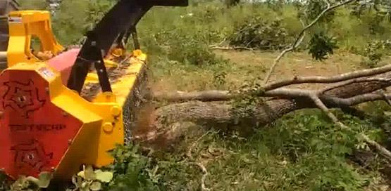 trituracao-de-capoeira-pesada